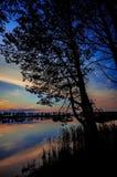 Härlig solnedgång till och med trädkontur fotografering för bildbyråer