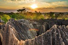 Härlig solnedgång Tsingy Royaltyfria Bilder