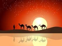 Härlig solnedgångtapet royaltyfri illustrationer