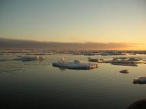 härlig solnedgångvinter Arkivbilder