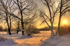 härlig solnedgångvinter arkivbild