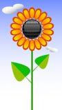 Solros stock illustrationer