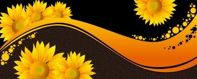 härlig solrosyellow Fotografering för Bildbyråer