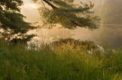 Härlig soluppgång över den fridsamma skogsjön Royaltyfri Bild