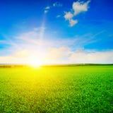 Härlig soluppgång över fält arkivbild