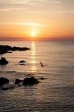 Härlig soluppgång över havet i Bulgarien Arkivfoton