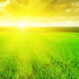 Härlig soluppgång Arkivbild