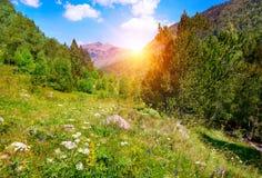 Härlig soluppgång i höga berg royaltyfri foto
