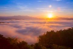 Härlig soluppgång i morgonen över dimmig tropisk skog, långt exponeringsfotografi Fotografering för Bildbyråer