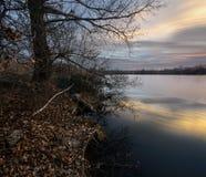Härlig soluppgång på dammet. Lugn Arkivbilder