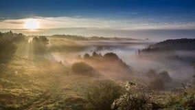 Härlig soluppgång på den dimmiga dalen i höst Royaltyfri Bild