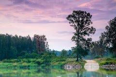 Härlig soluppgång på floden Arkivbilder