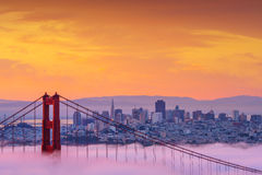 Härlig soluppgång på Golden gate bridge i låg dimma Royaltyfria Foton