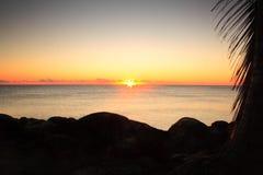 Härlig soluppgång på havhorisont Arkivfoto