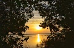 Härlig soluppgång på sjön royaltyfri bild