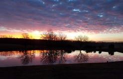 Härlig soluppgång som förbiser dammet arkivbild
