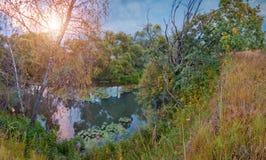 härlig sommar för bildnaturflod Royaltyfri Bild