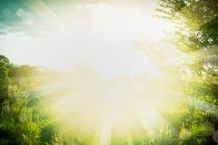 Härlig sommarbakgrund med grönt gräs, lövverk och solen rays Arkivfoto