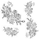 Härlig sommarmodell av blommor Ställ in garnering från rosnolla royaltyfria bilder