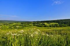Härlig sommarpanorama av det Siberian lantliga landskapet Royaltyfria Bilder