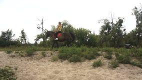 Härlig spenslig flicka som rider hennes häst arkivfilmer