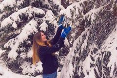 Härlig stående av en flicka i vinterskog Arkivfoton