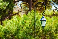 Härlig stearinljushållare Arkivfoto