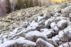 Härlig stenflod i vinterberget - Vitosha, Bulgarien Fotografering för Bildbyråer
