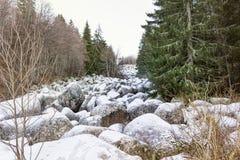 Härlig stenflod i vinterberget - Vitosha, Bulgarien Arkivfoton
