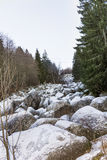 Härlig stenflod i vinterberget - Vitosha, Bulgarien Royaltyfria Foton