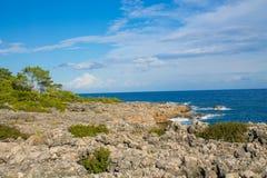 Härlig stenig kustlinje med havsvågor och träd royaltyfria bilder