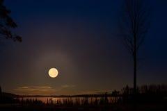 Härlig stjärnklar natt Arkivbilder