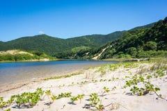 härlig strand Arkivfoto