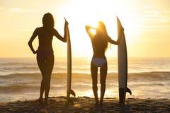 Härlig strand för solnedgång för surfingbrädor för flickor för bikinisurfarekvinnor Fotografering för Bildbyråer