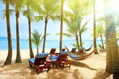 härlig strand Hängmatta mellan två palmträd på stranden Ho Royaltyfria Foton