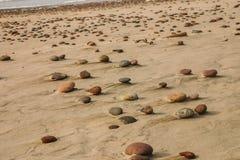 Härlig strand med färgrika kiselstenar i sand Arkivfoto