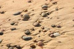Härlig strand med färgrika kiselstenar i sand Royaltyfria Foton