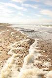 Härlig strand med färgrika kiselstenar i sand Royaltyfria Bilder