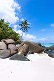 Härlig strand med palmträd Arkivfoto
