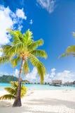 Härlig strand på Bora Bora arkivbild