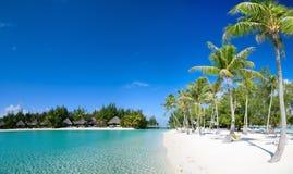 Härlig strand på Bora Bora royaltyfri bild