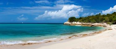 Härlig strand på karibiska St Martin Arkivbild
