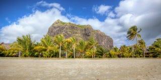 Härlig strand på Mauritius Arkivfoton
