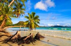 Härlig strand på Praslin Arkivbild
