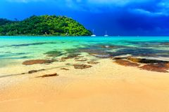 härlig strand Sikten av den trevliga tropiska sandiga stranden med den gröna kokosnöten gömma i handflatan träd omkring Arkivbild