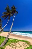 Härlig strand, Tangalle, Sri Lanka Arkivfoton