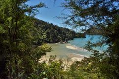 Härlig strandframtidsutsikt som inramas med busken och träd royaltyfri foto