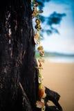 Härlig strandliggande i Thailand Royaltyfri Foto