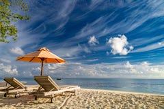 Härlig strandplats, tropiskt landskap, chaisevardagsrumbegrepp royaltyfri fotografi