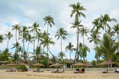 Härlig strandsemesterort med många kokospalmer Royaltyfria Bilder